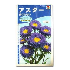 花の種 アスター[紫くれない] 1ml(メール便可能)|vg-harada
