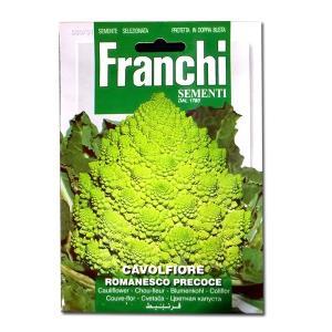 野菜の種/種子 カリフラワー ロマネスコ・イタリア野菜 5g/1100粒 (メール便可能)|vg-harada