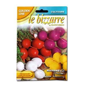 野菜の種/種子 カラフルラディッシュ・イタリア野菜 15g/約1500粒 (メール便可能)|vg-harada