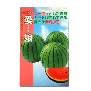 野菜の種/種子 愛娘・スイカ 8粒 (メール便可能)|vg-harada
