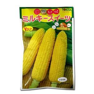 野菜の種/種子 ミルキースイーツ・とうもろこし 200粒 (メール便可能)|vg-harada