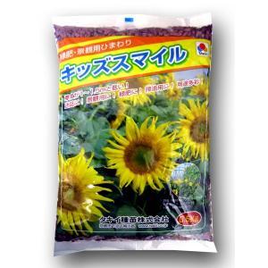 花の種 ひまわり・キッズスマイル・緑肥景観用ヒマワリ 0.5kg|vg-harada