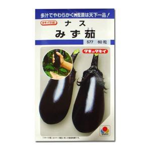 野菜の種/種子 みず茄・ナス みず茄子 60粒(メール便可能)タキイ種苗|vg-harada