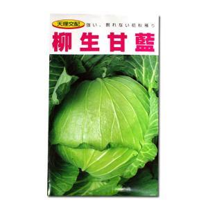 野菜の種/種子 柳生甘藍・キャベツ 1.5ml (メール便可能)|vg-harada