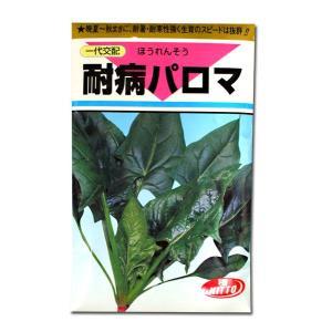 野菜の種/種子 耐病パロマ・ほうれんそう 1dl (メール便可能)|vg-harada