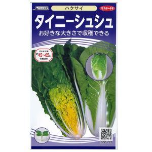 野菜の種/種子 タイニーシュシュ/ゆめいろはくさい・ハクサイ1.6ml(メール便発送)サカタのタネ 種苗|vg-harada