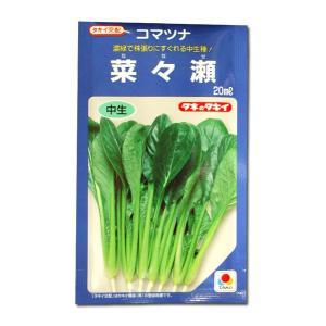 野菜の種/種子 菜々瀬・コマツナ 20ml(メール便発送)タキイ種苗|vg-harada