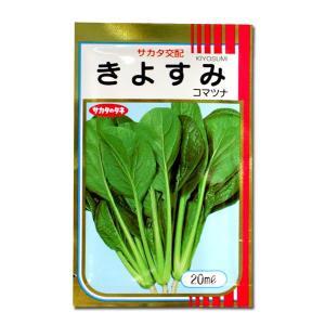 野菜の種/種子 きよすみ・コマツナ 20ml(メール便発送)サカタのタネ 種苗|vg-harada