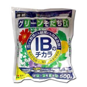 花にも野菜にも観葉植物にも使える肥料 IBのチカラ グリーンそだちEX 500g 園芸用品・肥料|vg-harada