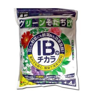 花にも野菜にも観葉植物にも使える肥料 IBのチカラ グリーンそだちEX 1.4kg 園芸用品・肥料|vg-harada