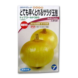 野菜の種/種子 超極早生!トップゴールド320・タマネギ 10ml (メール便可能)|vg-harada