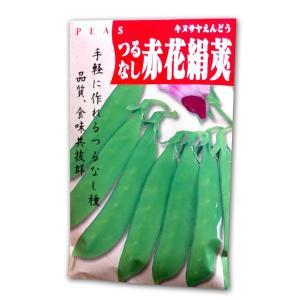 野菜の種/種子 赤花絹莢・つるなし/きぬさや/えんどう 1dl (メール便発送)|vg-harada