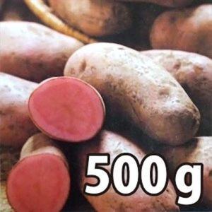野菜・種/苗[春じゃがいも種芋]ノーザンルビー じゃがいも種芋・生もの種 混玉<SS〜Lサイズ>量り売り500g|vg-harada
