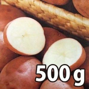 野菜・種/苗[春じゃがいも種芋]北海道産 ベニアカリ べにあかり  じゃがいも種芋・生もの種 混玉<SS〜Lサイズ>量り売り500g