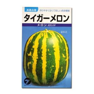 野菜の種/種子 タイガーメロン 1.5ml (メール便可能)|vg-harada