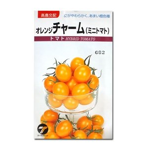 野菜の種/種子 オレンジチャーム・ミニトマト 0.1ml (メール便可能)|vg-harada
