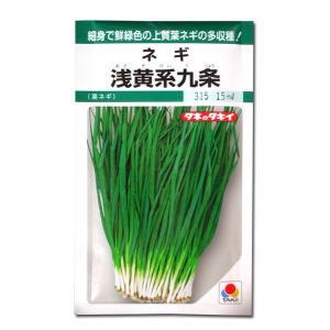 野菜の種/種子 浅黄系九条・ねぎ 15ml (メール便可能)タキイ種苗 vg-harada