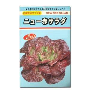 野菜の種/種子 ニュー赤サラダ・リーフレタス 1.7ml (メール便可能)|vg-harada