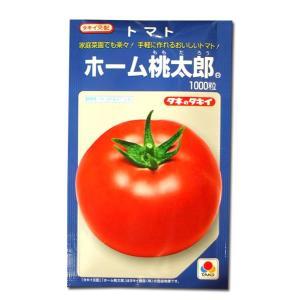 野菜の種/種子 ホーム桃太郎EX・トマト 1000粒(メール便発送/大袋)タキイ種苗|vg-harada