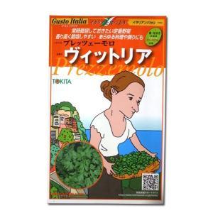 ハーブの種 プレッツェーモロ ヴィットリア/イタリアンパセリ・イタリア野菜 200粒 (メール便可能)|vg-harada