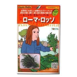 ハーブの種 ルーコラ・セルバーティカ ローマ・ロッソ/ワイルドロケット・イタリア野菜 500粒 (メール便可能)|vg-harada