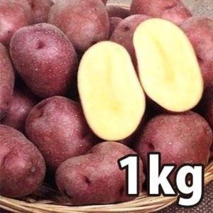 野菜・種/苗[春じゃがいも種芋]北海道産 インカルージュ 北海98号 じゃがいも種芋・生もの種 量り売り1kg|vg-harada