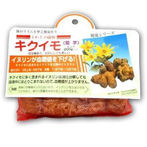 野菜・種/苗 キクイモ・菊芋 種芋・生もの種 200g|vg-harada