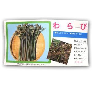 野菜の苗 わらび ワラビ 苗・種 2株入[袋詰め山菜]|vg-harada