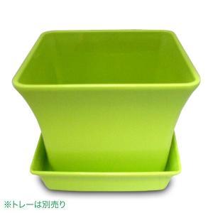 ベビーリーフプランター 12型 グリーン ガーデニング・プランター|vg-harada