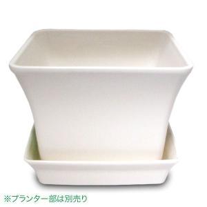 ベビーリーフプレート(トレー)12型 ホワイト ガーデニング・プランター|vg-harada