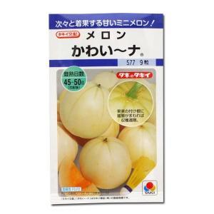 野菜の種/種子 かわいーナ・メロン かわい〜ナ 9粒 (メール便可能)タキイ種苗|vg-harada