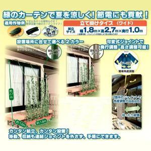 つる植物 栽培セット[グリーン]立て掛けタイプ(ワイド)幅1.8×高さ2.7×奥行1.0m 緑のカーテン/みどりのカーテン 農業資材|vg-harada