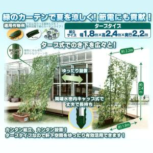 つる植物 栽培セット[グリーン]タープタイプ 幅1.8×高さ2.4×奥行2.2m 緑のカーテン/みどりのカーテン 農業資材|vg-harada