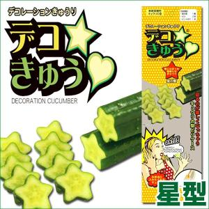 デコきゅう(家庭菜園用キュウリの型)星型 ガーデニング・雑貨|vg-harada
