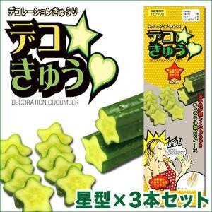 デコきゅう(家庭菜園用キュウリの型)星型×3本セット ガーデニング・雑貨|vg-harada