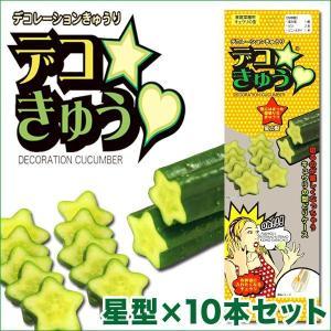 デコきゅう(家庭菜園用キュウリの型)星型×10本セット ガーデニング・雑貨|vg-harada