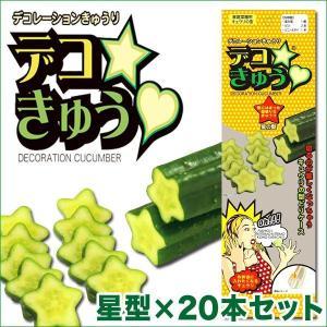デコきゅう(家庭菜園用キュウリの型)星型×20本セット ガーデニング・雑貨|vg-harada