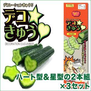 デコきゅう(家庭菜園用キュウリの型)ハート型と星型の2本組×3セット ガーデニング・雑貨|vg-harada