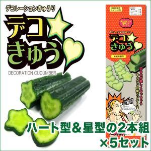 デコきゅう(家庭菜園用キュウリの型)ハート型と星型の2本組×5セット ガーデニング・雑貨|vg-harada