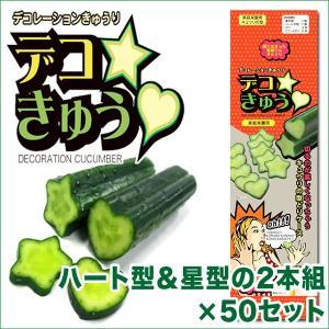 デコきゅう(家庭菜園用キュウリの型)ハート型と星型の2本組×50セット ガーデニング・雑貨|vg-harada