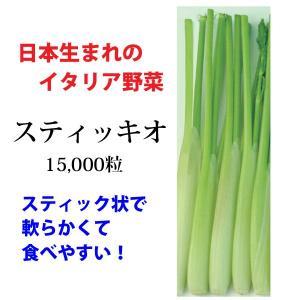 野菜の種/種子 スティッキオ・イタリア野菜 15,000粒  (大袋)|vg-harada