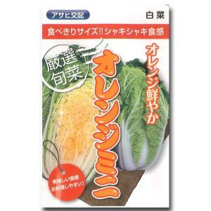 野菜の種/種子 オレンジミニ・ハクサイ 1ml (メール便発送)|vg-harada