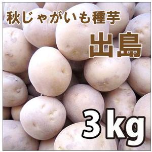 野菜・種/苗 [秋じゃがいも種芋]じゃがいも種芋 出島・生もの種 量り売り3kg |vg-harada