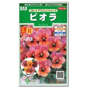 花の種 ビオラ[フルーナ アプリコットシェード] 0.1ml(メール便可能)|vg-harada