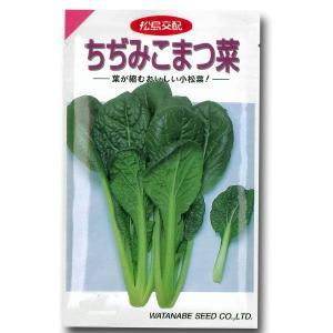 野菜の種/種子 ちぢみこまつ菜・小松菜・コマツナ 4.6ml (メール便発送)