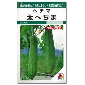 野菜の種/種子 太へちま・ヘチマ 60粒 (メール便可能)タキイ種苗|vg-harada