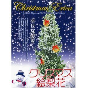 大人気!数量限定!!クリスマスツリー クリスマス絵梨花 4号鉢|vg-harada