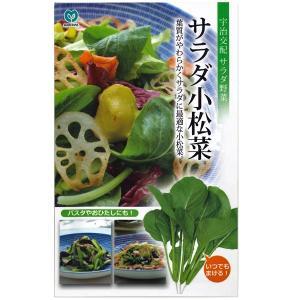 野菜の種/種子 サラダ小松菜・コマツナ 8ml (メール便可能)|vg-harada