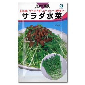 野菜の種/種子 サラダ水菜・ミズナ 7ml (メール便発送)|vg-harada