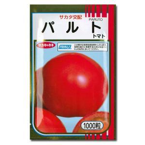 野菜の種/種子 パルト・トマト 1000粒 (メール便可能/大袋)サカタのタネ|vg-harada